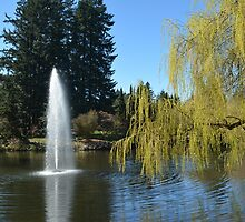 Beautiful spring garden with willow tree by a pond and water fountain by naturematters