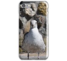 Gull of the Sea iPhone Case/Skin