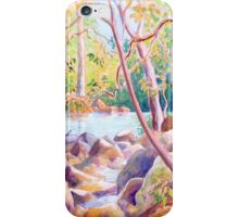 Mountain Stream, Newlands Forest, Cape Town, South Africa iPhone Case/Skin