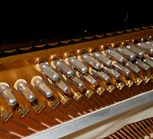 Points of Attachment - Inside The Piano by BlueMoonRose