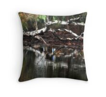 By the Waterside By Lorraine McCarthy Throw Pillow
