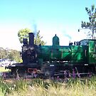 Puffing Billy by Coloursofnature