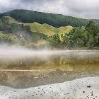 Twice as good_Rotorua by Sharon Kavanagh
