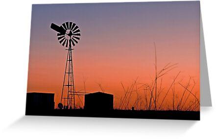 Oakey Sunset  - Qld Australia by Beth  Wode