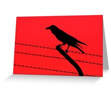 Barbed Wire Crow Greeting Card