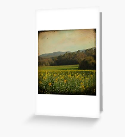 Once Upon a Time a Field of Flowers Greeting Card