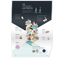The Pathology Lab Process Infographic Poster