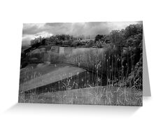 Menzies Creek -2006 Greeting Card