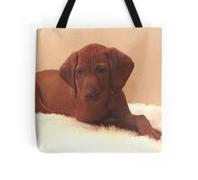 Sleepy pup Tote Bag