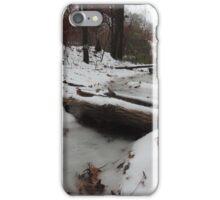 Snow on Fallen Tree iPhone Case/Skin