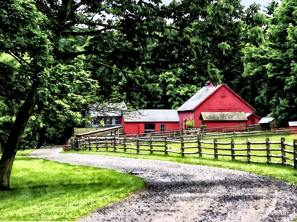 Red Barn by Susan Savad