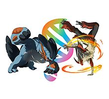 MegaEvolution (Swampert vs Blaziken)-Pokemon Photographic Print