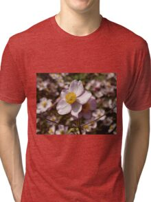 Japanese Anemone in Wales Tri-blend T-Shirt