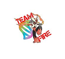 Pokemon - Team Fire - Blaziken Photographic Print