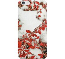 Leaves in the Snow iPhone Case/Skin