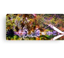 Color Burst - The View Across Metal Print