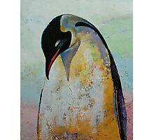 Emperor Penguin Photographic Print