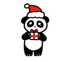 Cute Santa Hat Gift Panda Photographic Print