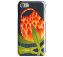 Floral symmetry iPhone Case/Skin