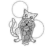 Kitty's Yarn Stash: Memento Mori Photographic Print