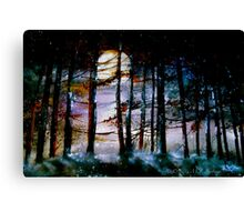 The Glory Of The Sky.. Canvas Print