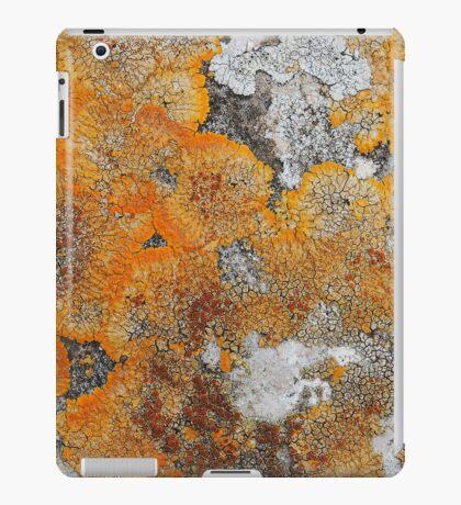 Nature abstract iPad Case/Skin
