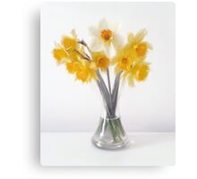 Still LIfe Daffodils in Glass Bell Vase Canvas Print