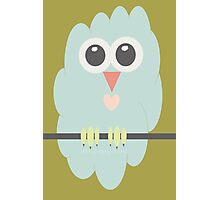 FLUFFY OWL Photographic Print