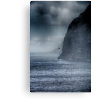 Fighting the Storm Canvas Print