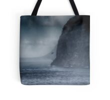 Fighting the Storm Tote Bag