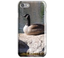 """""""I'm Not A Sittin Duck, I'm A Silly Goose"""" iPhone Case/Skin"""