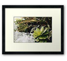 Light Greenery Framed Print