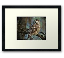 Woodland Goddess Framed Print