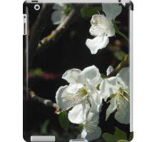 Plum Blossoms iPad Case/Skin