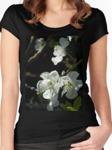Plum Blossoms Women's Fitted Scoop T-Shirt