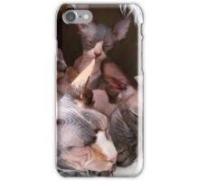 sphynx tortie bicolor black sleeping iPhone Case/Skin