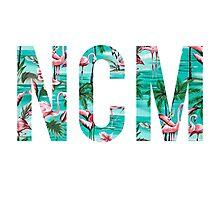 NCM - Tropical Flamigoes Photographic Print