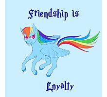 Friendship is Loyalty Photographic Print