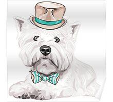 dog West Highland White Terrier Poster