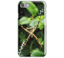 Spider on a Plant iPhone Case/Skin