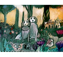 Dogs in garden Photographic Print