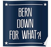 bern down 4 what?! Poster