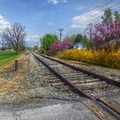 Springtime Along The Tracks by James Brotherton