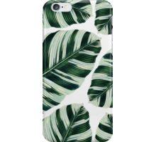 Tropical Foliage #redbubble #lifestyle iPhone Case/Skin