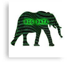 big data Canvas Print