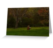 The Loner Bench Greeting Card