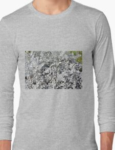 Leaves of ever green plant. Long Sleeve T-Shirt