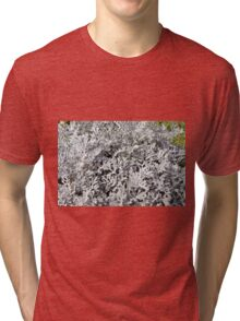 Leaves of ever green plant. Tri-blend T-Shirt
