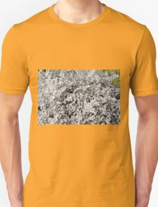 Leaves of ever green plant. T-Shirt