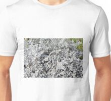Leaves of ever green plant. Unisex T-Shirt